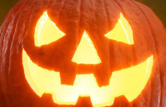 Teaching Halloween Vocabulary to ESL Students