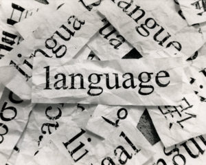 learn a language before teaching a language